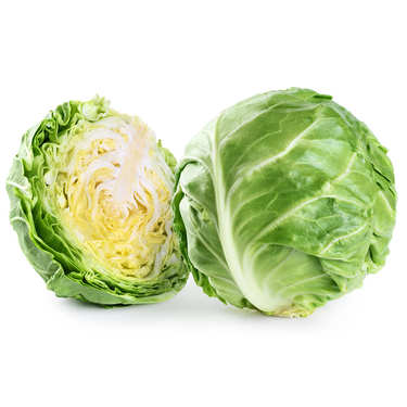 Organic Green Cabbage from France