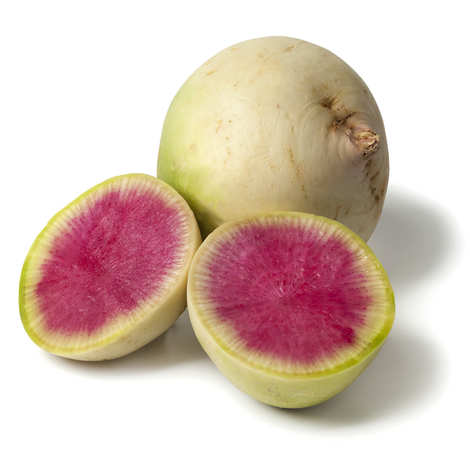 - Organic Red Meat Radish from France