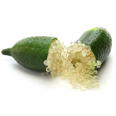 Citron caviar frais d'Italie - variété faustrime