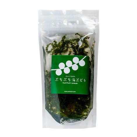 Umami Paris - Umi Budo Seaweed in Brine