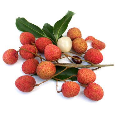 Organic Litchi branch from Madagascar