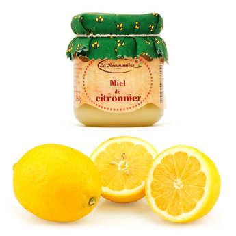 - Assortiment citrons de Syracuse IGP bio et le miel de citronnier