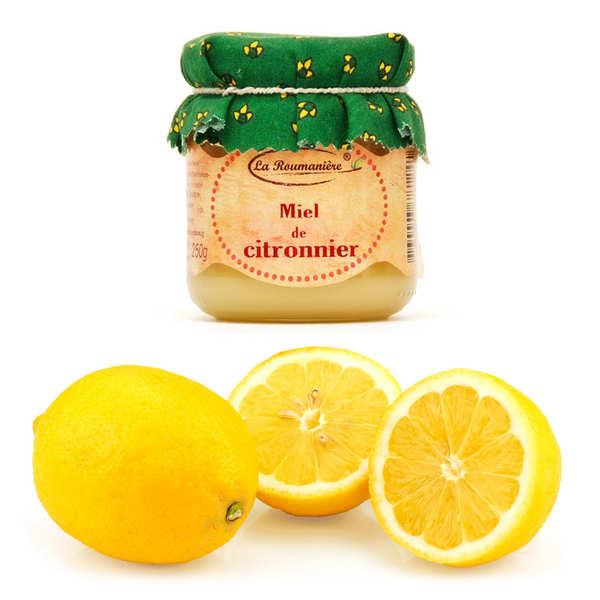 Assortiment citrons de Syracuse IGP bio et le miel de citronnier