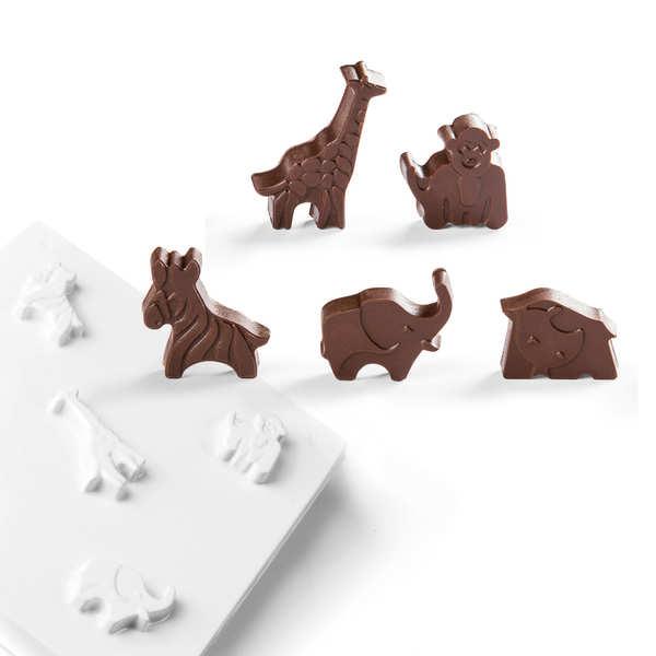 Moule en pvc pour chocolat - animaux de la savane - alvéole 20 empreintes