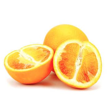 - Oranges sanguine de Sicile bio - variété Tarocco