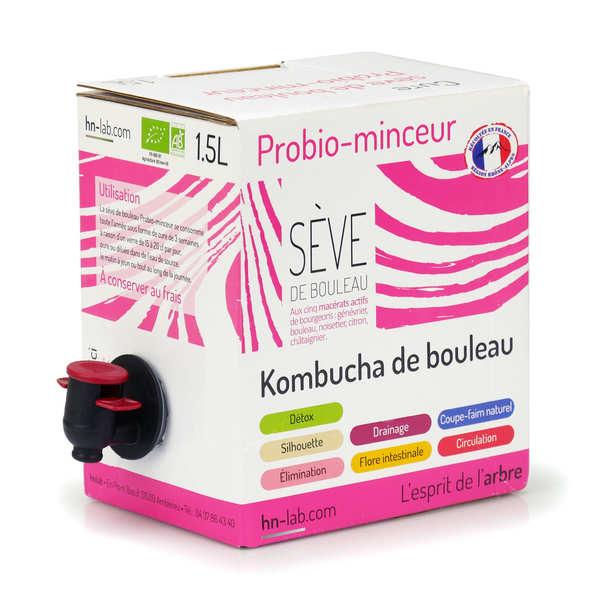 Organic Kombucha from Birch - Slimness