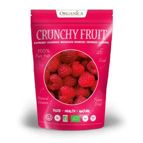 Organica - Crunchy fruit - Organic Freeze-Dried Raspberry