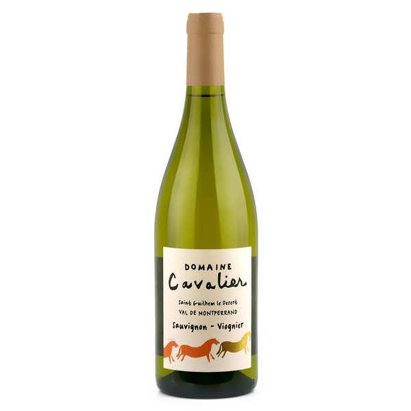 Domaine cavalier blanc - languedoc en conversion bio - 2018 - bouteille 75cl