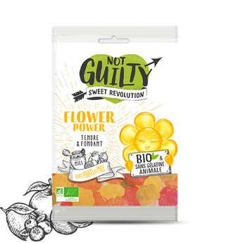 Not Guilty - Bonbons aux fruits et au miel bio, sans gélatine animale & vegan - Flower Power