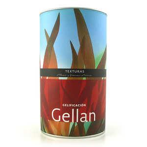 Texturas Ferran Adria - Gellan Texturas