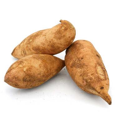 Organic Sweet Bonita Potato