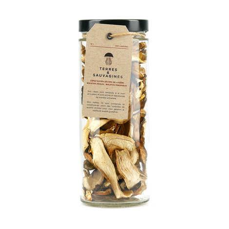 Terres & Sauvagines - Extra dried porcini mushrooms