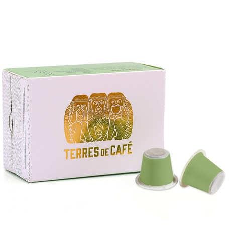 Terres de Café - Décaféiné Mexique bio - capsules compatibles Nespresso®