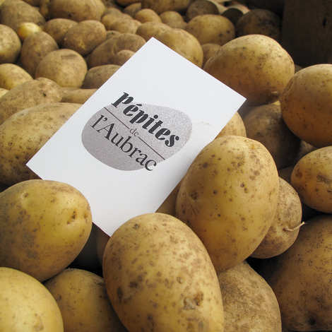 Pépites de l'Aubrac - Agata organic potatoes - standard size 35/70