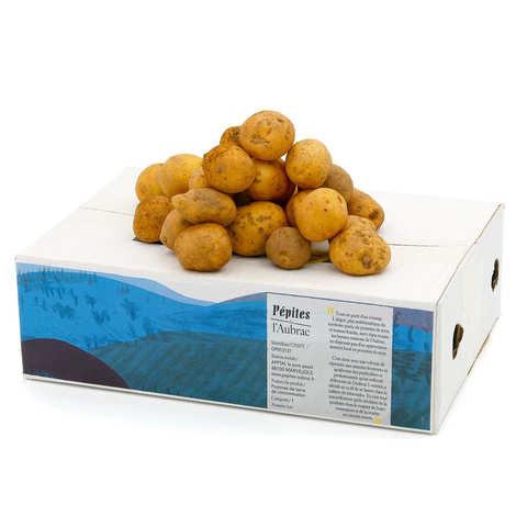 Pépites de l'Aubrac - Pommes de terre bio de l'Aubrac Grenailles - variété Marabel