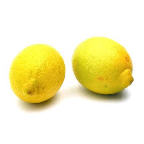 - Organic Fino Lemon