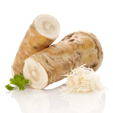 - Fresh Raifort Root