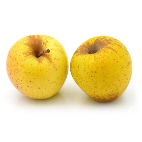 - Pommes Golden Delicious bio