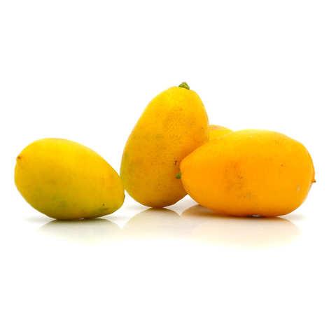 - Limequats bio