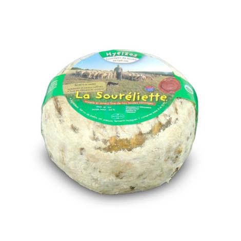 Fromagerie Le Fédou - Ferme de Hyelzas - La Soureliette de Hyelzas  - Sheep's milk cheese from Lozère