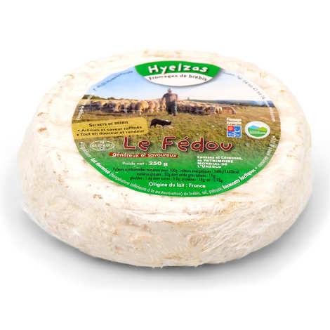 Fromagerie Le Fédou - Ferme de Hyelzas - Le Fédou - Lozère ewe cheese with raw milk