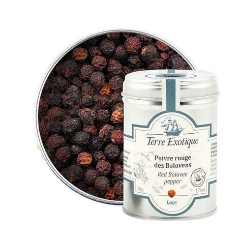 Terre Exotique - Organic Bolovens Pepper