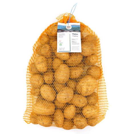 Pépites de l'Aubrac - Organic potatoes from the Aubrac Monalisa variety - big size