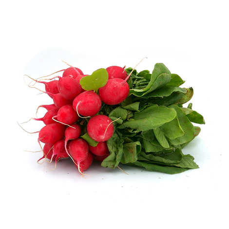 - Organic red Radish from France