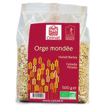 Celnat - Organic hulled barley