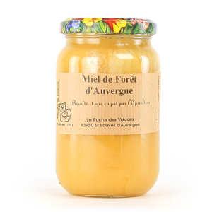 La Ruche des Volcans - Forest honey - Organic - From Auvergne