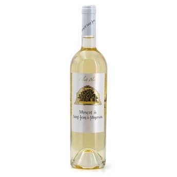 Muscat St Jean de Minervois - Sweet wine - Muscat de St-Jean de Minervois - Eclats blancs