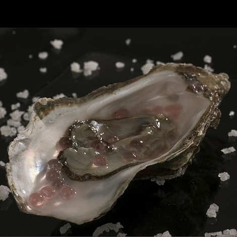 Christine Le Tennier - Vinegar and Shallot Flavour Pearls