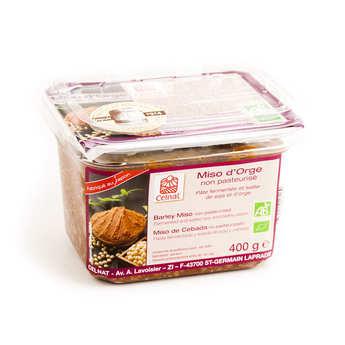 Celnat - Unpasteurised barley miso paste