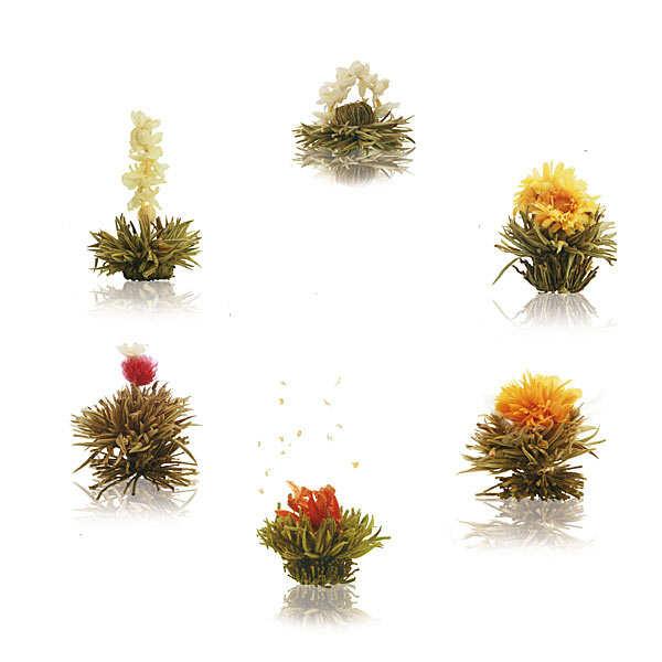 6 white tea flowers box