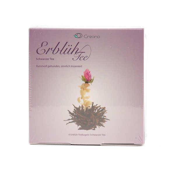 Coffret 6 fleurs de thé noir