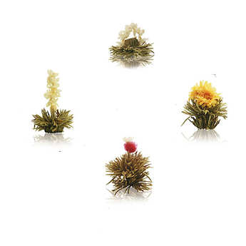 Creano - Coffret 4 fleurs de thé blanc bio