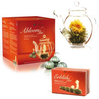 Creano - Teapot and 6 Abloom tea flowers gift set