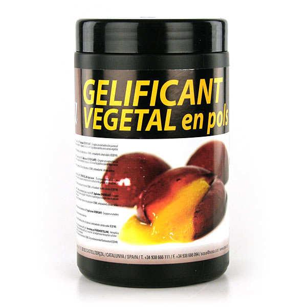 Sosa vegetal gelatine