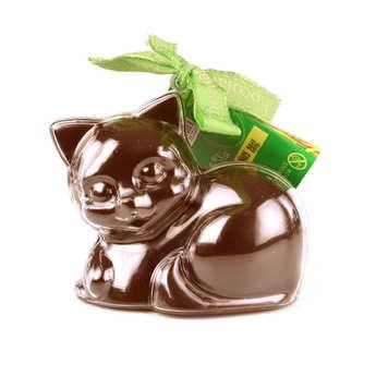 Bovetti chocolats - Bimbi Bio - Chaton en chocolat au lait et son moule à réutiliser