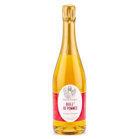 Maison Pouget - Jus de pommes pétillant sans alcool - Bull' de pommes