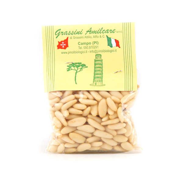 Italian pine kernel