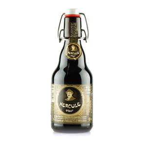 Brasserie Ellezelloise - Hercule - Bière Stout Belge - 9%