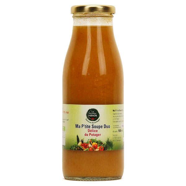 Organic Vegetable Delight Soup