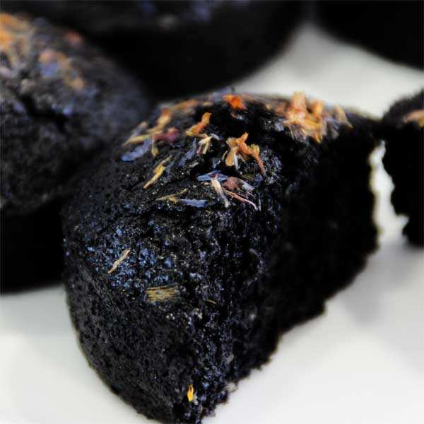 Colorant en poudre noir brillant  - poudre de charbon