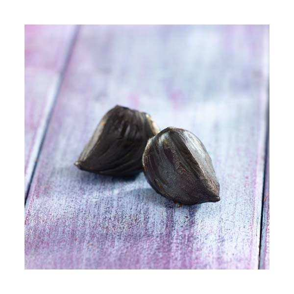 Black Aomori garlic head from Japan