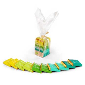 Chocolats François Pralus - La mini pyramide des Tropiques Bio - Pralus
