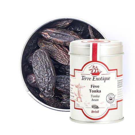 Terre Exotique - Whole Tonka Beans