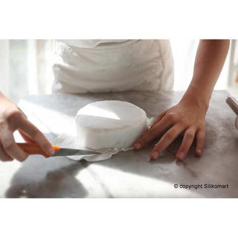Silikomart - Wonder Cake Mould