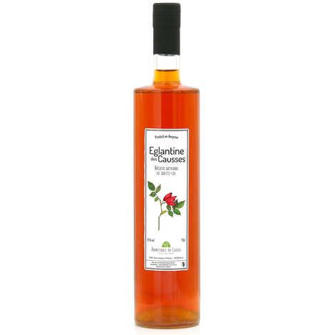 Aromatiques du Larzac - Ferme des Homs - Eglantine des Causses - Apéritif artisanal de l'Aveyron