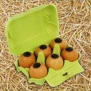 Voisin chocolatier torréfacteur - Boîte à oeufs de Pâques - 6 oeufs coquilles véritables fourrés praliné